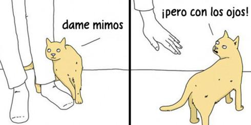 Si los animales pudieran hablar (2ª parte)